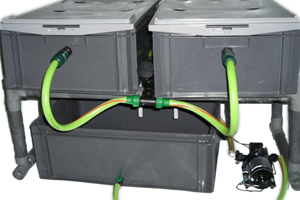 l 39 or vert systme aroponique easy aero haute pression i